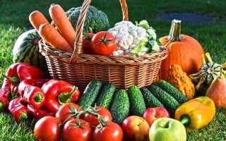 Сушилка для фруктов и овощей своими руками — 3 лучших способа.