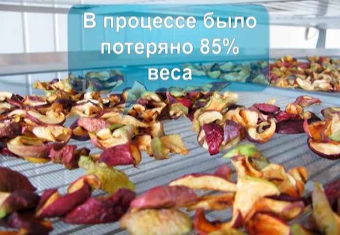 сушка фруктов на инфракрасной пленке