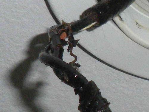 плозая проводка с поврежденной изоляцией из-за этого било током